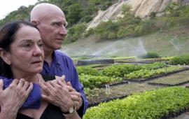 Бразилиялық жұп 2 млн-нан астам ағаш отырғызып, қаңыраған алқапты тропикалық жұмаққа айналдырды